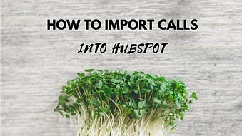 How to Import Calls into HubSpot